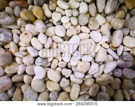 Home Decoration Concept And Abstract Background Made With Many Small White Rock. Closeup View Of Whi