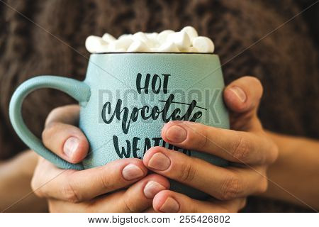 Blue Mug With Coffee, Hot Chocolate Or Cocoa With Marshmallow In Female Hands. Inscription On Cup Ho