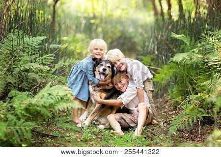 Three Happy Little Children Are Lovingly Hugging Their Adopted Pet Senior Dog, Outside In A Fern For