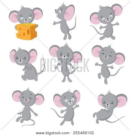 Cartoon Mouse. Gray Mice In Different Poses. Cute Wild Rat Animal Vector Characters. Wild Cute Mouse