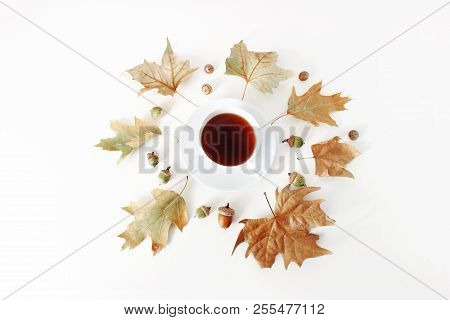Autumn Maple And Oak Leaves Composition With Cup Of Tea And Acorns On White Background. Styled Stock