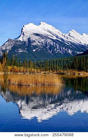 Vertical Shot Of Mount Rundle Reflected In Blue Water With Fall Colors