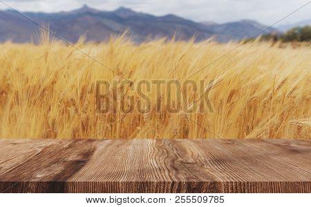 Wheat Ears Field Background, Ripe Wheat Crop With Wooden Floor