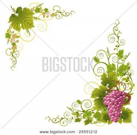 grapes border