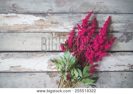 Beautiful Astilbe Flowers On Aged Wooden Background