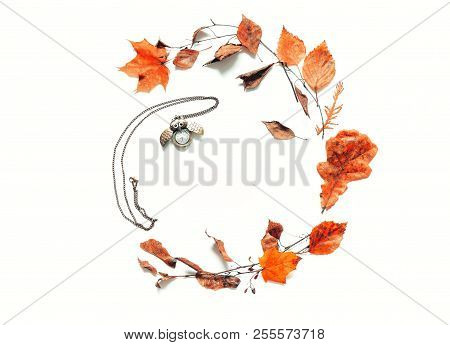 Autumn background - dry autumn leaves and old bronze clock in form of the owl on the white background. Autumn still life with space for text