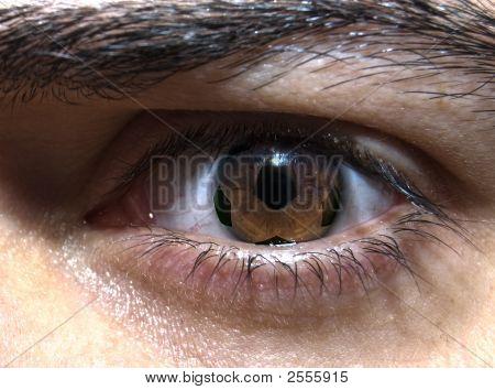 Fußball-Auge