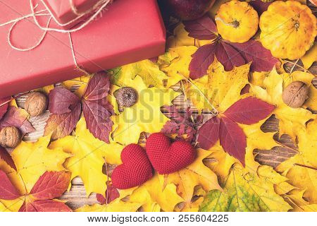 Autumn Composition With Gifts, Pumpkins, Apple, Nuts, Acorn, Knitted Hearts, Fall Leaves. Copy Space