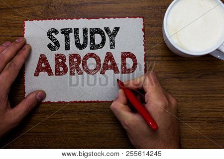 Word Writing Text Study Abroad. Business Concept For Pursuing Educational Opportunities In A Foreign