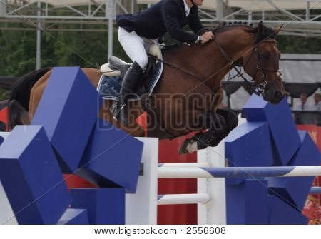 The Horse Jumps Through An Obstacle In Equestrian Competitions