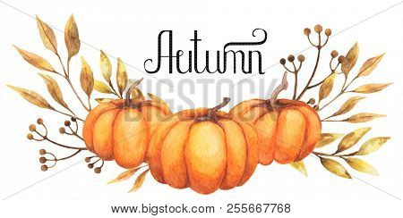 Watercolor lettering autumn design elements things set. Hand drawn watercolor.