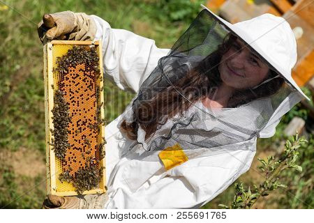 Honeycomb With Honey And Bees. Woman Beekeeper