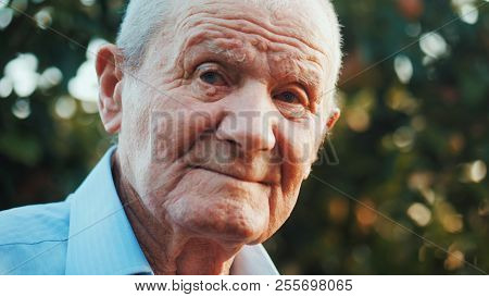 Very Old Man Portrait With Emotions. Grandfather Is Smiling And Looking To Camera. Portrait: Aged, E