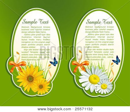 vector set, floral background with fresh herbs and butterfly