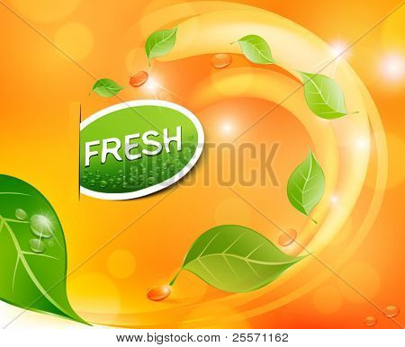 Vector juicy, fresh background with leaves and drops