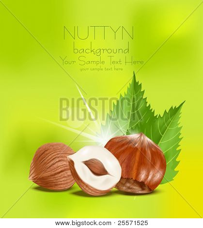 vector hazelnut kernels with the leaves on a green background