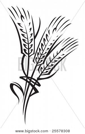 monochrome illustration of ears of wheat