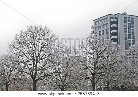 Winter park trees and highrise building architecture against on a gray winter day in Vallingby in Stockholm, Sweden. poster