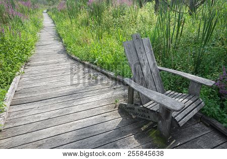 Chair On The Appalachian Trail Marking Maine Bound Trail On The Swamp River Boardwalk In Pawling, Ny