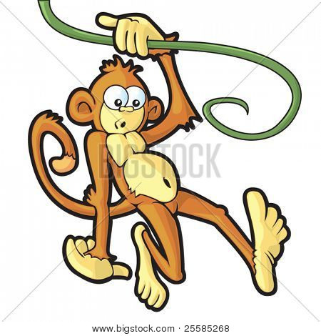 Monkey swinging on a vine looking at something interesting.