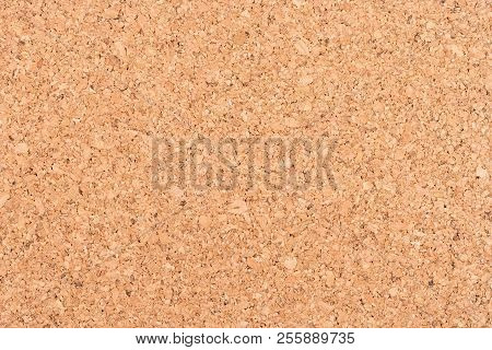 Cork Board Background Texture - Insert Your Own Message Or Bulletin With Thumbtacks. Top View.
