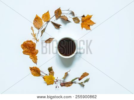 Fall Composition - Cup Of Coffee And Various Dry Fall Leaves On The White Background. Fall Still Lif