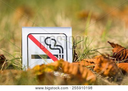 No Smoking Sign In The Nature With Autumn Leaves In The Sun