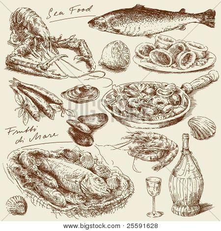 hand drawn sea food
