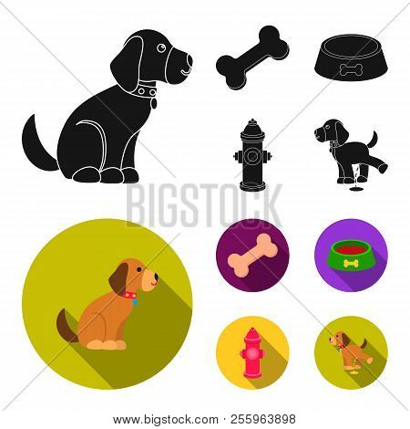 A Bone, A Fire Hydrant, A Bowl Of Food, A Pissing Dog.dog Set Collection Icons In Black, Flat Style