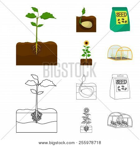 Company, Ecology, And Other Web Icon In Cartoon, Outline Style. Husks, Fines, Garden Icons In Set Co