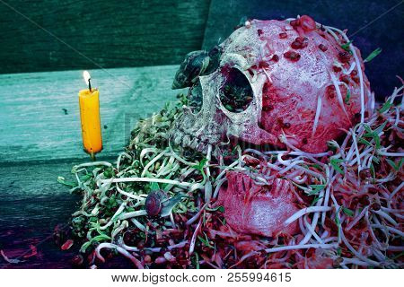 Death skull human with big snail crawl on face and rot bean sprouts some foul smelly. poster