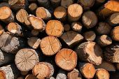 Lumber. Fire logs. Firewood natural background. Woodpile in sawmill. poster