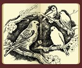 Moleskine drawing of birds flowers and branches - high-detailed ink illustration (JPG version) poster