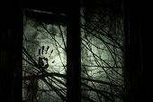 Background for Halloween party design. Dark night with an ominous light outside the window. Silhouettes of the terrible branches poster