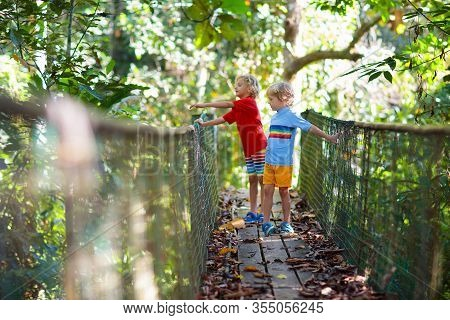 Kids Hiking In The Mountains. Bridge Over River.