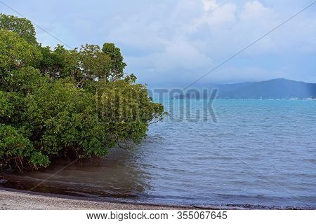 Rainstorm Coming In Across The Sea Bringing Wet Weather Towards Mangroves Lining The Shore
