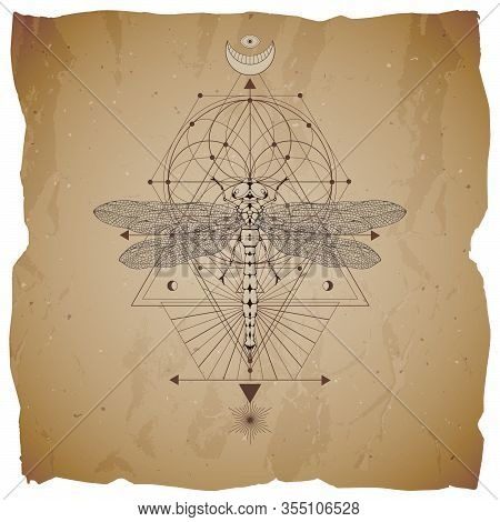 Vector Illustration With Hand Drawn Dragonfly And Sacred Geometric Symbol On Vintage Paper Backgroun