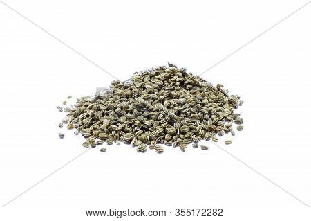 Celery Dried Herb - Celery Seed Isolated