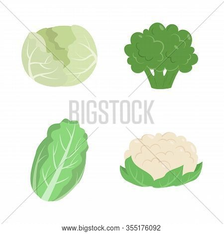 Vegetables Set With Cabbage, Cauliflower, Broccoli, And Chinese Cabbage. Vector Illustration.