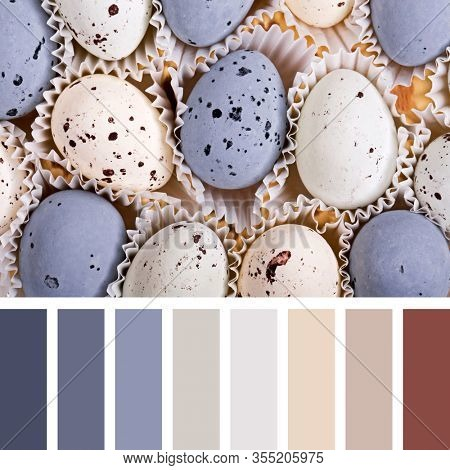 Speckled realistic candy egss, in a colour palette with complimentary colour swatches.