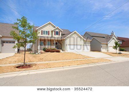 Suburban Lawn during drought