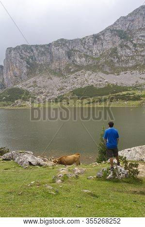 Lakes Of Covadonga Tourist
