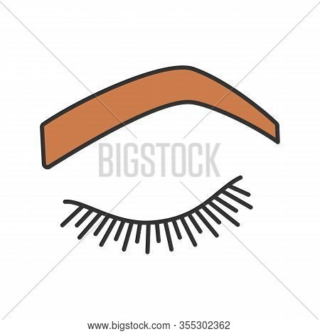 Steep Arched Eyebrow Shape Color Icon. Soft Angled Eyebrows. Brows Shaping By Tattooing. Closed Woma