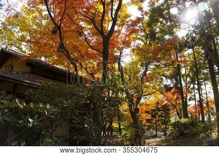 Colorful Autumn View Of Traditional Huts In Japanese Garden, Osaka, Japan. Translation Of The Inscri