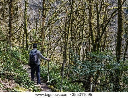 In The Winter Senior Man With A Backpack And In A Baseball Cap Is Walking Along A Hiking Trail With