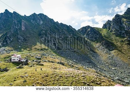 Shepherds Gathering Sheep On A Mountain With Mountain Rescue House And Mountain In The Background An