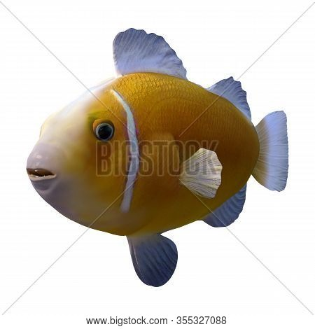 3D Rendering Yellow Clownfish On White