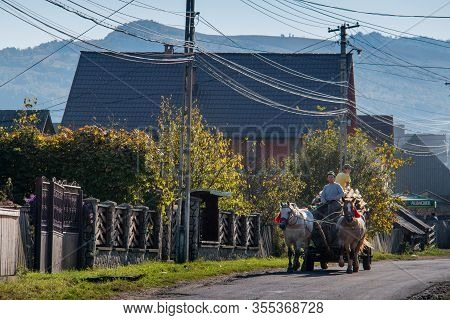 Maramures, Romania - October 10, 2014: Unknown People Work With Carts And Horses In The Maramures Re