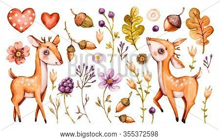 Cute Baby Deer. Vector Forest Watercolor Nursery Cartoon Woodland Animals Deer, Flowers Leaves. Ador
