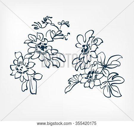 Ink Flower Vector Sketch Illustration Japanese Chinese Oriental Line Art Design Elements